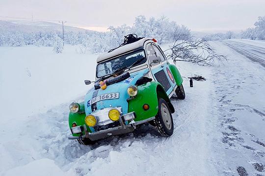 Arktiset ankat Jäämerta valloittamassa